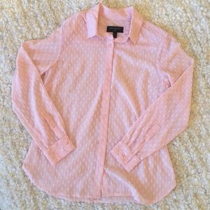 SheerBlush Pink Button Down Shirt
